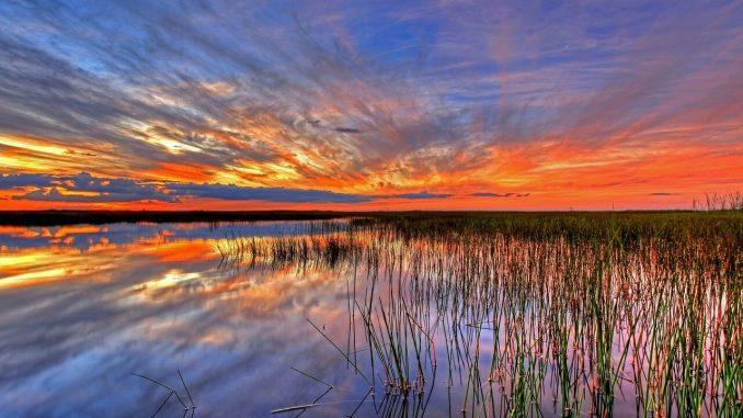 Sonnenaufgang auf den Keys / Florida