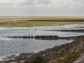 Amrum, die Nordseeinsel